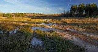 Государственная Дума упорядочила порядок изъятия земельных участков