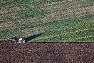 В Госдуму внесен законопроект об изъятии неиспользуемой сельской земли