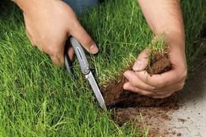 Власти сказали, что передумали изымать землю у граждан