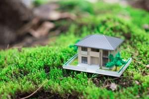 Регионы, завысившие кадастровую стоимость земли, будут обязаны выкупить участки у частных владельцев
