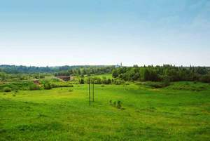 Росреестр подсказал, как можно купить земельный участок, хозяин которого неизвестен