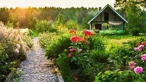 Комитет Госдумы поддержал законопроект о садоводстве и дачном хозяйстве